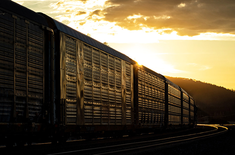 AAR: 'Rail Traffic is Close to Pre-Pandemic Levels'