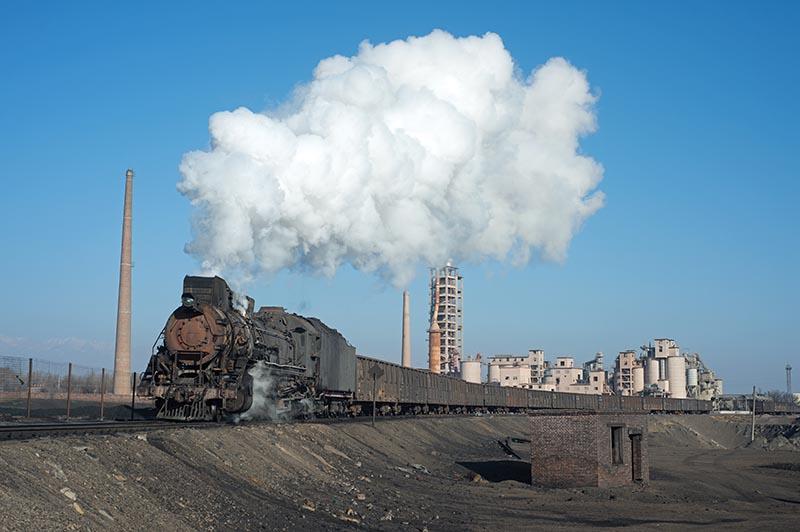 Chinese Steam Sandaoling
